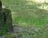 Interpelacja w sprawie cmentarza przy ul. Warszawskiej
