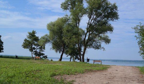 Co dalej z Dziką Plażą przy Jeziornej? 18 marca rozstrzygnięcie przetargu